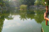 Laguna Étterem és Panzió